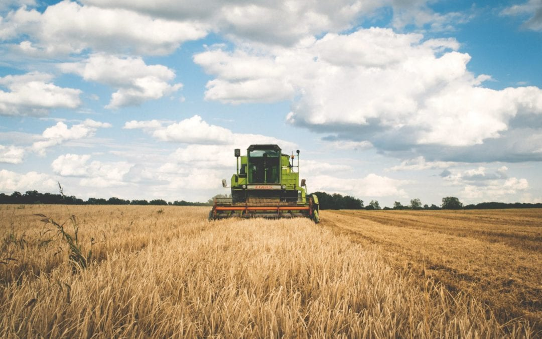 "🔊 Cecília Carbonell: ""Deixarem de ser pagesos i acabarem sent jardiners o ambientalistes"""